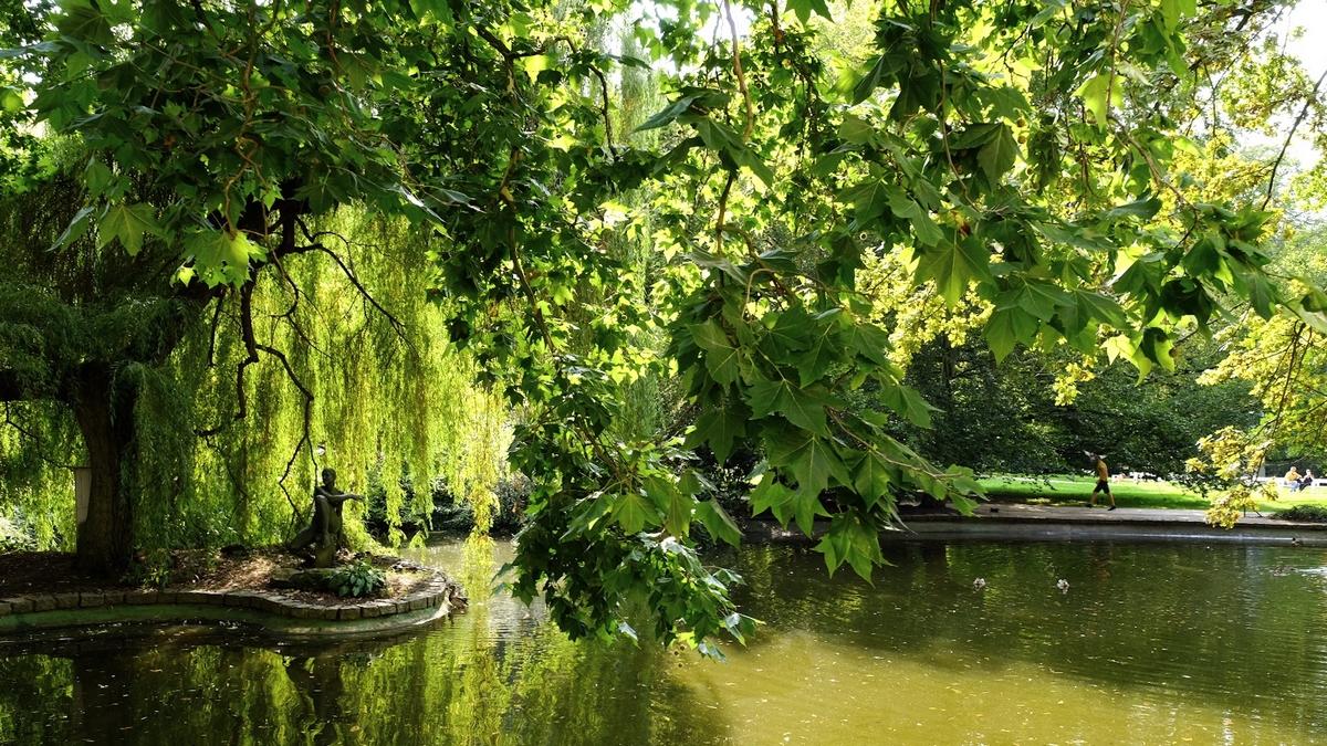 парк с прудом и вековыми деревьями Карловы Вары
